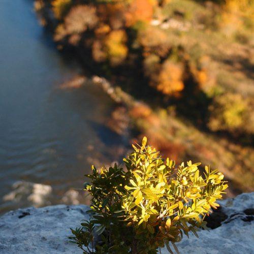 180 Balazuc Ardèche gîte charme vue panoramique jacuzzi gorges de l ardèche soleil couchant
